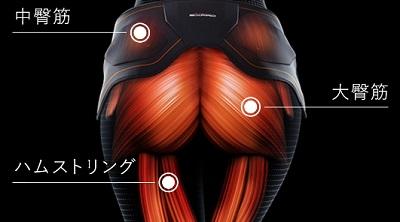 ヒップアップに必要な3つの筋肉